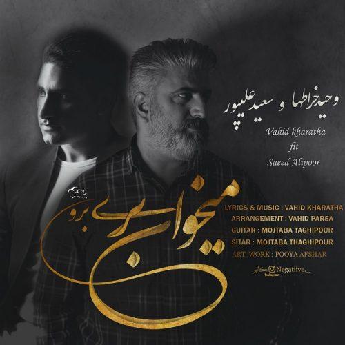 دانلود آهنگ جدید وحید خراطها و سعید علیپور به نام میخوای بری برو