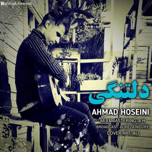 احمد حسینی - دلتنگی